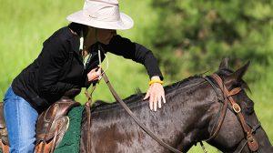 Horseback-Riding-Public-Relations